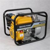 Sfoggio poco costoso dell'acqua della benzina, pompa ad acqua domestica 12V con il prezzo più poco costoso