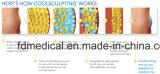 Saloncellulite-Abbau Cryolipolysis Karosserie, die Maschine abnimmt