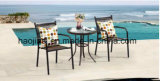 屋外の/Rattan/庭は/テラス/ホテルの家具の藤椅子及び表セットした(HS1023C-2&HS 6060ET)