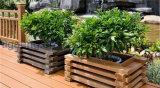カスタム再生利用できるべと病の証拠の通りまたは庭または公園DIYによって上げられるWPCのプラントボックス