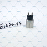 Düse der Magnetspule-festklemmenden Mutteren-E1024014, die beibehält, Mutter/Mutter spannt