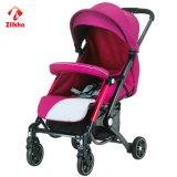Caminhante do bebê com frame e assento regular e Carrycot