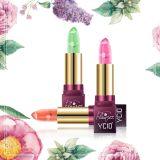 De voedende Vloeibare Lippenstift van de Steen van de Bloemen van de Zorg van de Lip Echte
