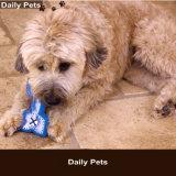 여름 애완 동물 공급 개 냉각 뼈 장난감