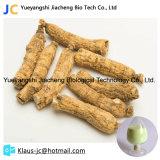 Азиатский экстракт женьшеня для мужского пола Enhancer растительные экстракты CAS50647-08-0