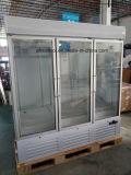 De verticale Diepvriezer van de Vertoning van het Bevroren Voedsel van de Deur van het Glas voor Supermarkt