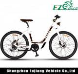 여자를 위한 36V 2 시트 전기 자전거