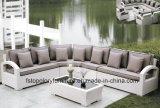 Canapé de jardin en plastique, les loisirs canapé, meubles de patio canapé pour l'extérieur (TG-061)
