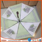 Parapluie durable de golf de couleur d'arc-en-ciel de vente chaude
