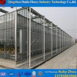 Agriculture galvanisée en verre de Rose de serre chaude de bâti en acier de Chambre verte