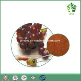 Выдержка семени виноградины полифенолов 95% чисто естественная, Proanthocyanidins