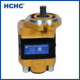 To export off Hydraulic Pump Forklift GEAR Dirty Pump Cbhz for