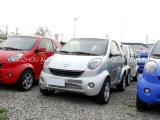 De Chinese Beroemde Elektrische Auto van het Merk met 2 Zetels