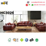 Sofá comercial do couro do escritório da mobília moderna (HC3015)