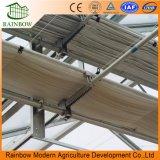 Sistema de ventilação do telhado para a estufa