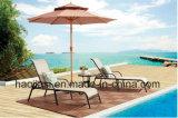 屋外の/Rattan/庭/テラス/ホテルの家具のTexileneの布のラウンジチェア及びセットされる側面表(HS 2018CLの&HS 6050ET)