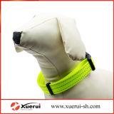 조정가능한 애완견 고리, 반지를 가진 사려깊은 개 목걸이