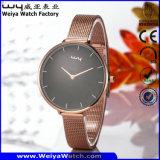 Beiläufige Uhr-Legierungs-Armbanduhr für Paare (Wy-109E)