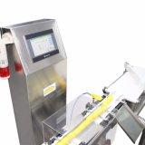 Precisive Gewichtung-Kontrolleur für industrielle Verpackung