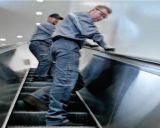Разрешение модернизации эскалатора вполне от Isuzu