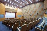 段階パフォーマンスのための専門のオーディオ・アンプか会議または会合