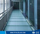 La gafa de seguridad clara del flotador/endureció el vidrio del edificio/el vidrio laminado teñido