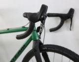 Cyclocross 대중적인 Sram 정점 11 속도 특별한 크롬 Moly 자전거 또는 자전거 (CX8)