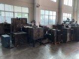 Vorm van de Injectie van de Douane van de hoge Precisie de Plastic, de Vorm van het Afgietsel van de Matrijs
