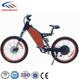 ベストセラーの電気自転車1000W