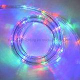 Licht van de Kabel van de Kabel van het Neon van de kleur het Veranderende Lichte DMX Gecontroleerde