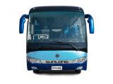 2017 10m 판매 Slk6108를 위한 호화스러운 차 버스