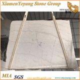 중국 Carrara 백색, Carrara 백색, Guangxi 백색 Polished 대리석 석판 & 도와 (YY-MS197)