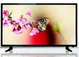 32 pouces d'affichage à cristaux liquides DEL HD Ready TV de couleur