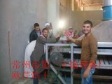 Essiccatore speciale cucinato del nastro trasportatore dei fagioli
