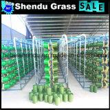Cor verde artificial super de grama do alto densidade 20mm