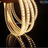 Alta qualità domestica 220V della striscia di Dacoration LED flessibile