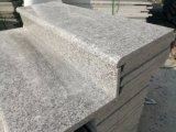 Granito grigio di colore del beta molto Competitve di prezzi di G623/Rosa proprietario della cava
