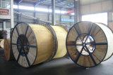 El fabricante de la fábrica como 3607 ACSR estándar descubre el conductor