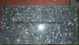 Natural Blue Pearl Stone Azulejo Blue Granite para Coutertop / Slab / Backsplash / Vanity Top