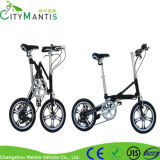 Faltbares erwachsenes Fahrrad-faltendes Fahrrad