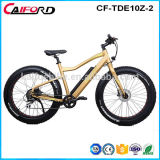 Fat adulte de vélo Vélo électrique 2018 Snow Bike