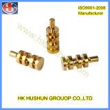 Parte de torneado de precisión de procesamiento mecánico (HS-TP-008)