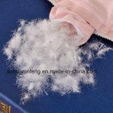 di quantità elevata 600t di cotone del tessuto dell'oca Duvet bianco giù