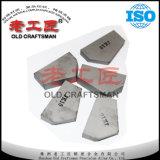 P30 zementierte Hartmetall-Karbid-Spitzen für Bergbau
