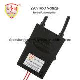 Chispa Quemador de Gas Gas 220 V los componentes de Cocina