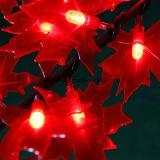 太陽タイプ表の装飾的な薄赤のかえでLEDの木ライト