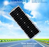 1개의 LED 가로등에서 모두를 점화하는 20W 태양 에너지 정원