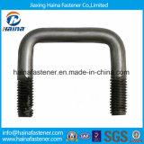 Bullone dell'acciaio inossidabile U (DIN3570)