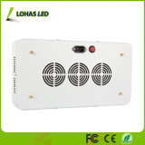Full Spectrum 300W 600W 900W 1000W 1200W Panel LED Plant Grow Light para Bloom and Vegetable