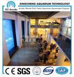 Precio mundial de acrílico material de acrílico del mar del proyecto del acuario
